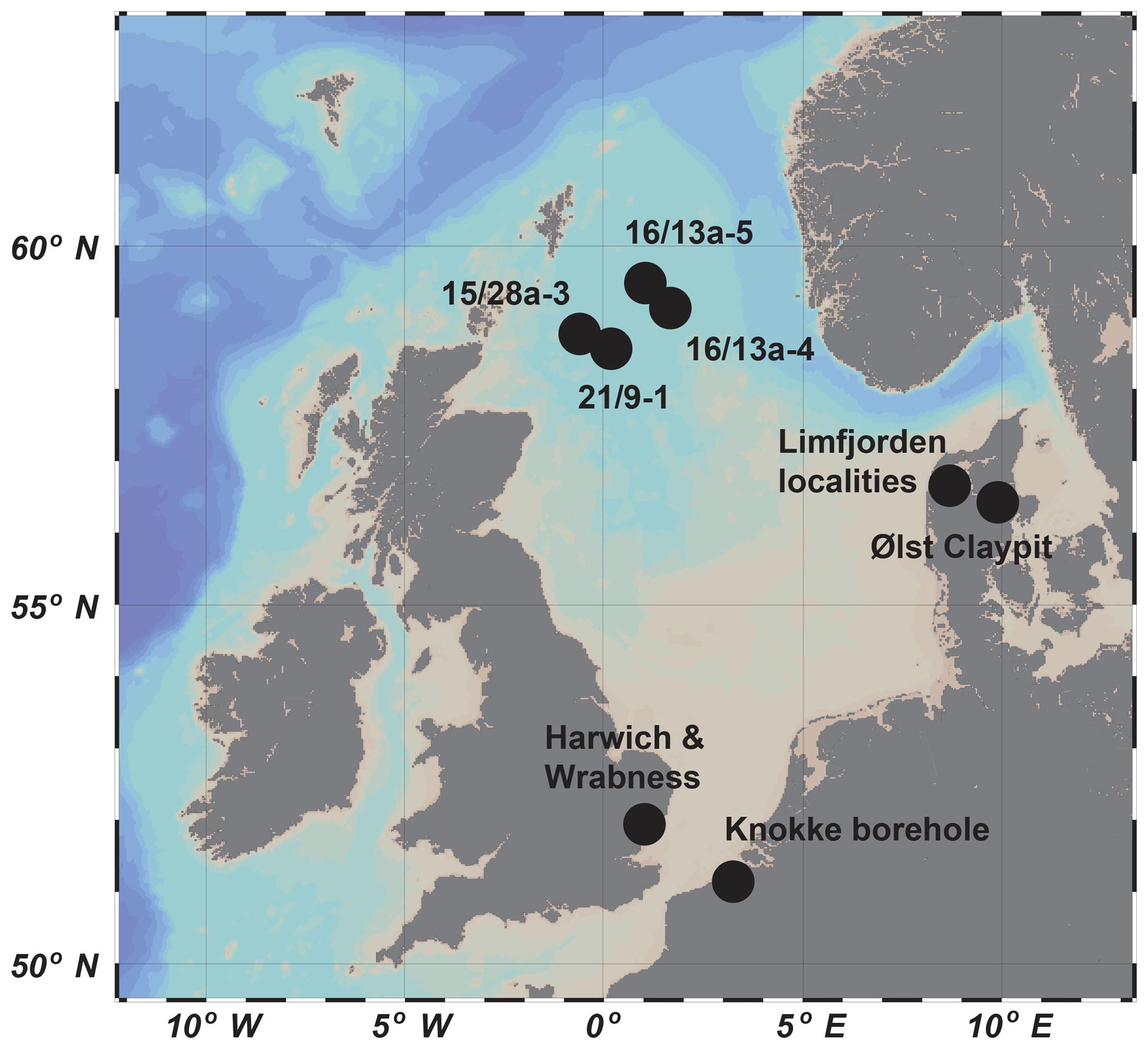 JM - Species of the diatom taxa Aulacodiscus and Trinacria